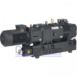 Rotary Screw Vacuum Pumps